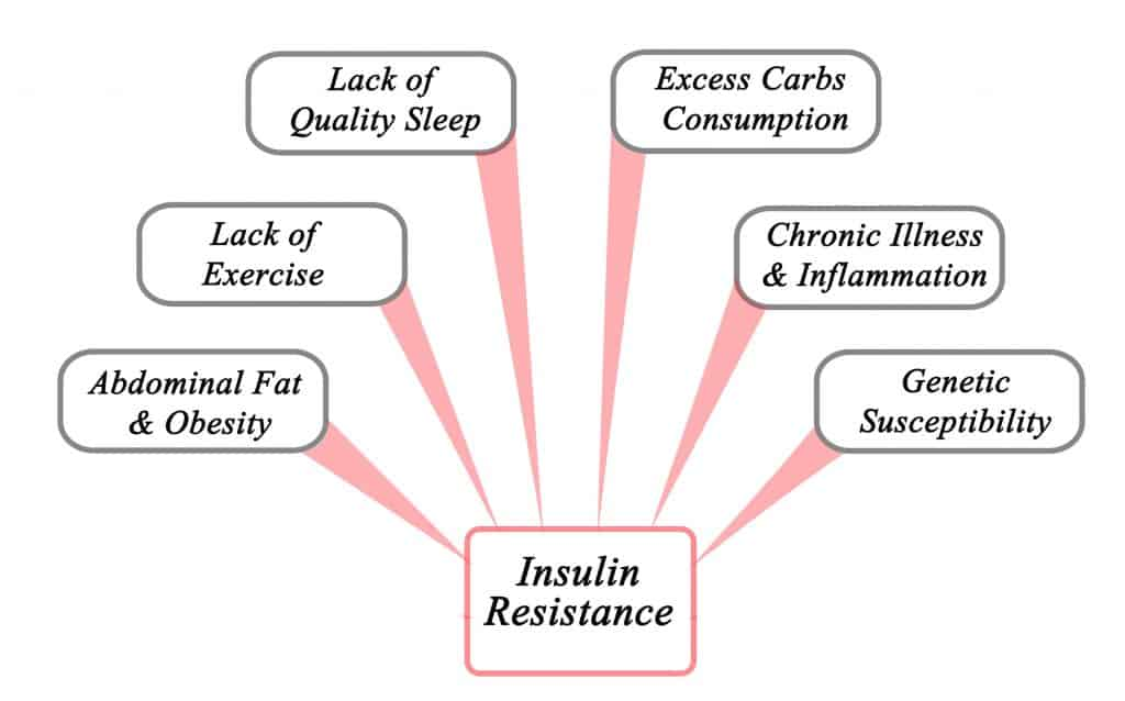 How to Combat Insulin Resistance