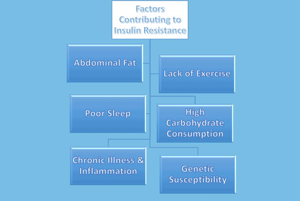 Combat Insulin Resistance