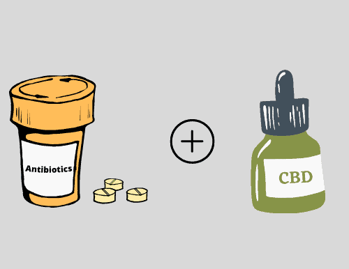 CBD and Antibiotics