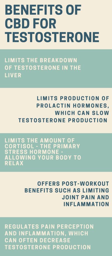 CBD and testosterone levels